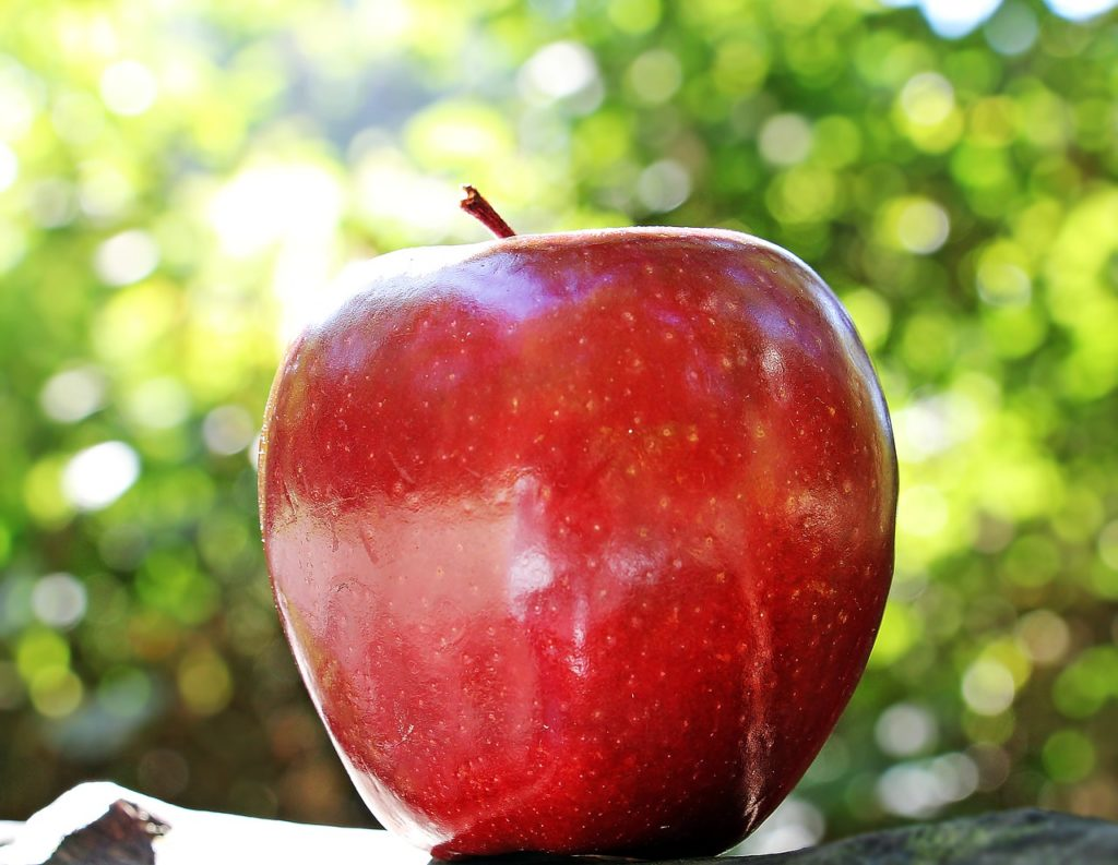 リンゴ酢 寝る前